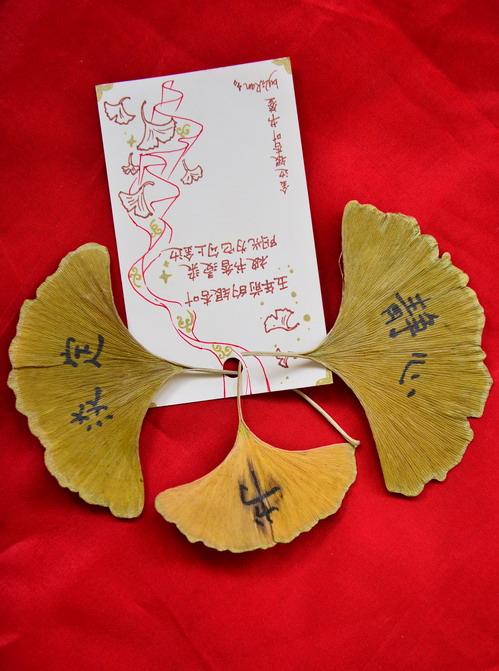 银杏树叶子做成的精美书签